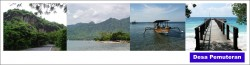 Desa Pemuteran : Pesona Kawasan Konservasi Terumbu Karang